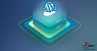 Cómo limpiar la base de datos de wordpress pliugin